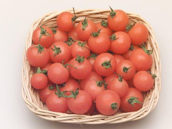 Il giorno del pomodoro