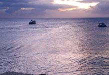 Dall'Arcipelago toscano al Coop.fi
