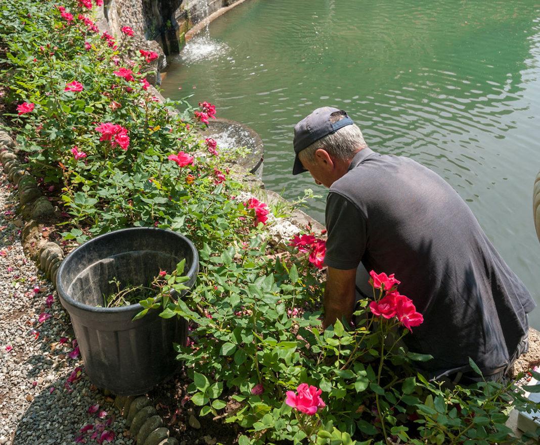 I lavori da fare in giardino