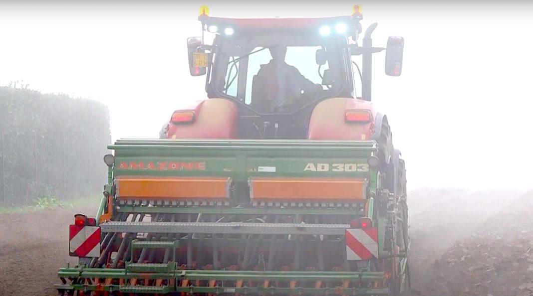 La coltivazione del grano in Mugello